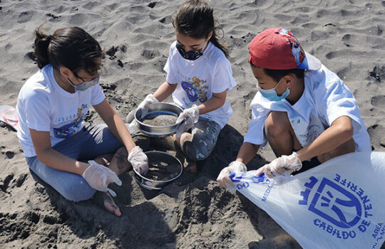 200 kilos menos de basura marina en Tenerife